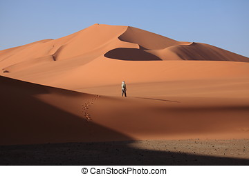 Sanddunes in the Sahara of Algeria