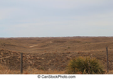 Sandhills Scenery