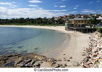 sandiger strand, -, botanik, bucht, sydney, australia