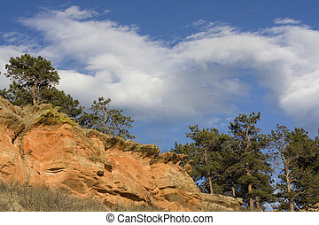 Sandstone cliffs and pine trees in Colorado