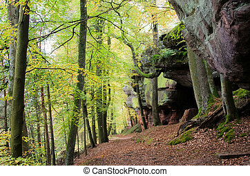 sandstone in the forest
