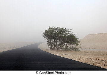 Sandstorm in the desert of Qatar, Middle East