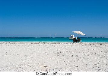 sandstrand, entspannend