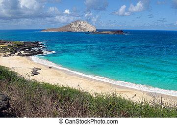 sandstrand, Hawaiianer