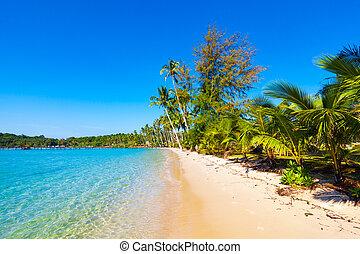 sandstrand, meer, schöne , tropische