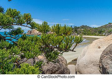 sandstrand, nordwesten, magnetisch, australia, blaues,...
