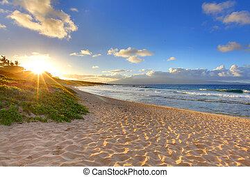 sandstrand, oneloa, hawaii, tropische , sonnenuntergang- ...