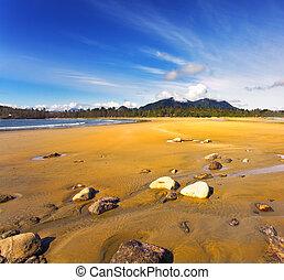 sandstrand, pazifischer ozean, steine
