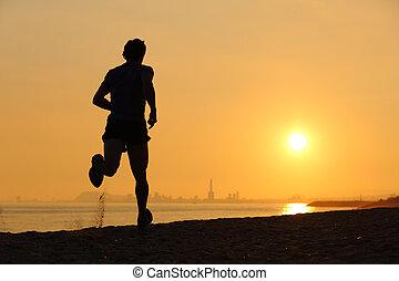 sandstrand, rennender , sonnenuntergang, gegenlicht, mann