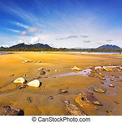 sandstrand, sandig, pazifischer ozean
