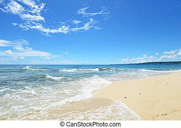 sandstrand, sommerzeit, prächtig
