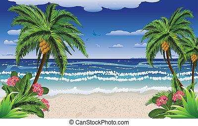 sandstrand, und, tropische , meer