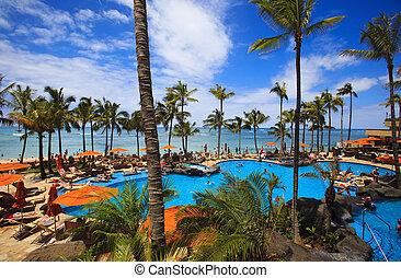 sandstrand, waikiki, hawaii, teich, schwimmender