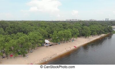 Sandy beach and forest aerial drone view
