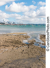 sandy beach at low tide with Auckland skyline in background