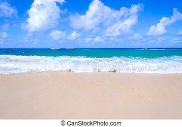 Sandy beach background next to ocean, Hawaii, Kauai