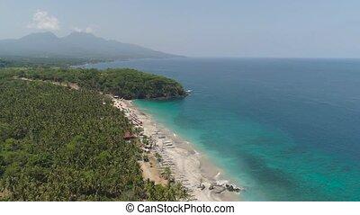 sandy beach in a tropical resort