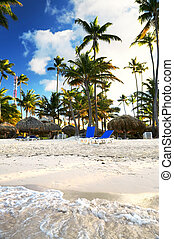 Sandy beach of tropical resort with palm trees and reclining...