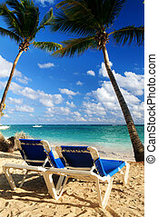 Sandy beach of tropical resort with palm trees and two ...