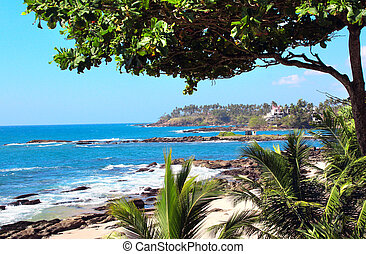 Sandy beach, palm leaves and waves of the Indian Ocean, Sri Lanka