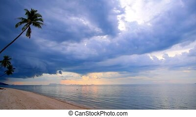 Sandy Beach with Coconut Palms and Impressive Sky.