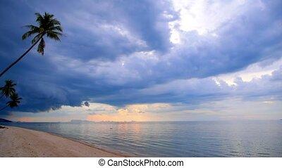 Sandy Beach with Coconut Palms and Impressive Sky.