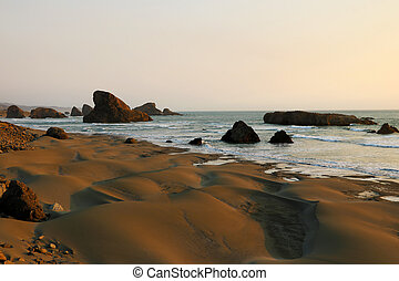 Sandy beach with small dunes on the Pacific coast