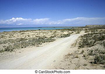 Sandy coast of lake.