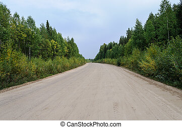 Sandy country road in forest