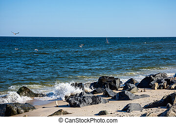 Sandy Hook Shoreline
