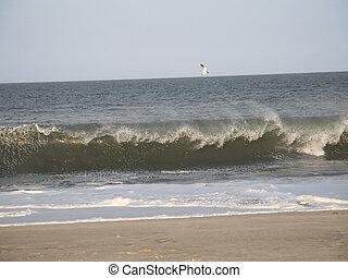 Sandy Hook Wave