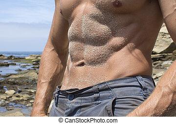 Sandy male abs at beach