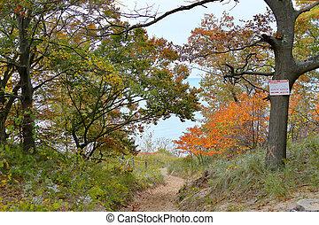 Sandy Path through oak trees in autumn colors