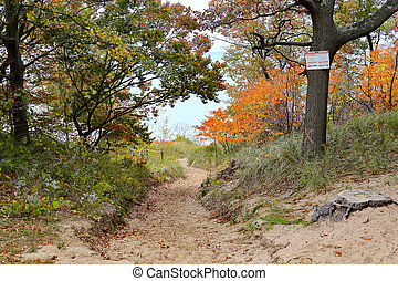 Sandy path with trees in autumn colors
