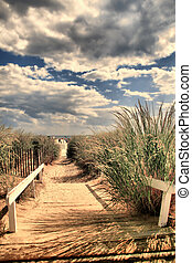 Sandy pathway to the beach