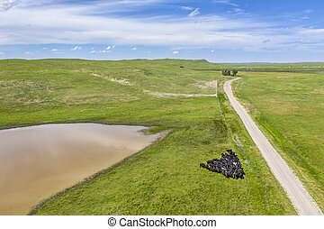 sandy ranch road in Nebraska Sandhills, summer aerial view ...