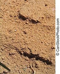 Reddish dirt with slightly large sand-sized granules.