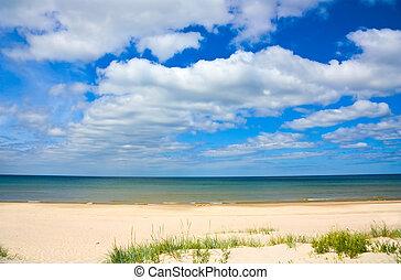 sandy shore of the Sea