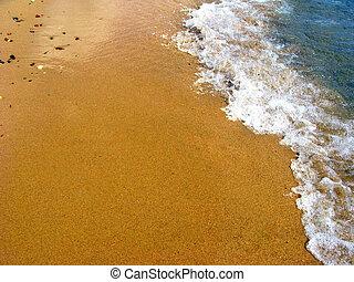 sandy summer beach - Detail of a sandy beach with fresh sea...