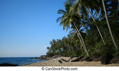 Sandy tropical beach over sea and blue summer sky background