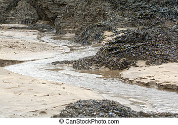Sandy UK beach at low tide with rock pools