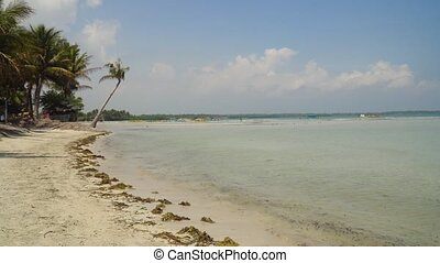 Sandy white beach. Philippines. - Tropical island with white...