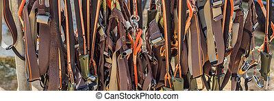 sangler, cordes, corde, equipment., bannière, format, parc, long