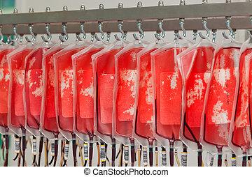 sangre, de, donante, sangre, en, el, sangre, laboratorio