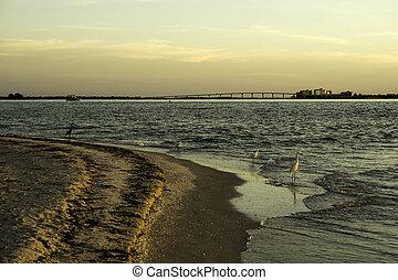 sanibel wyspa