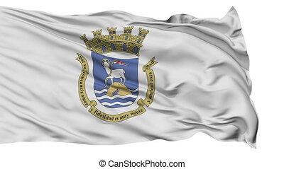 Sanjuan City Isolated Waving Flag