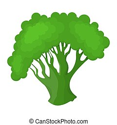 sano, fresco, verde, ingrediente, broccoli., cottura
