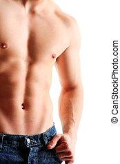 sano, muscular, joven, man.