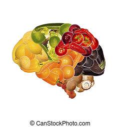 sano, nutrición, bueno, cerebro
