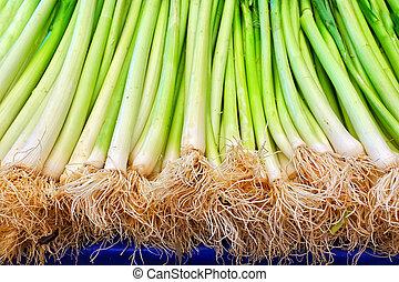 sano, vegetal, verde, puerro, fresco